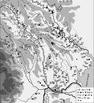 Culturi din perioada hallstattiană timpurie.